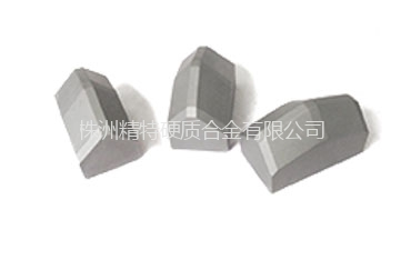 Exploration and Drilling  Shield Cutter
